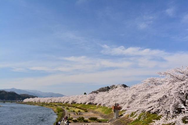 角館桜まつり2016の駐車場情報