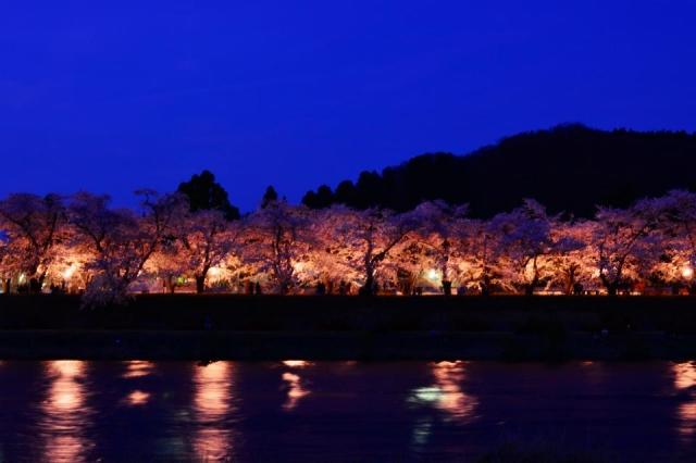 角館桜まつりのライトアップ