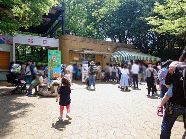 千葉市動物公園 混雑